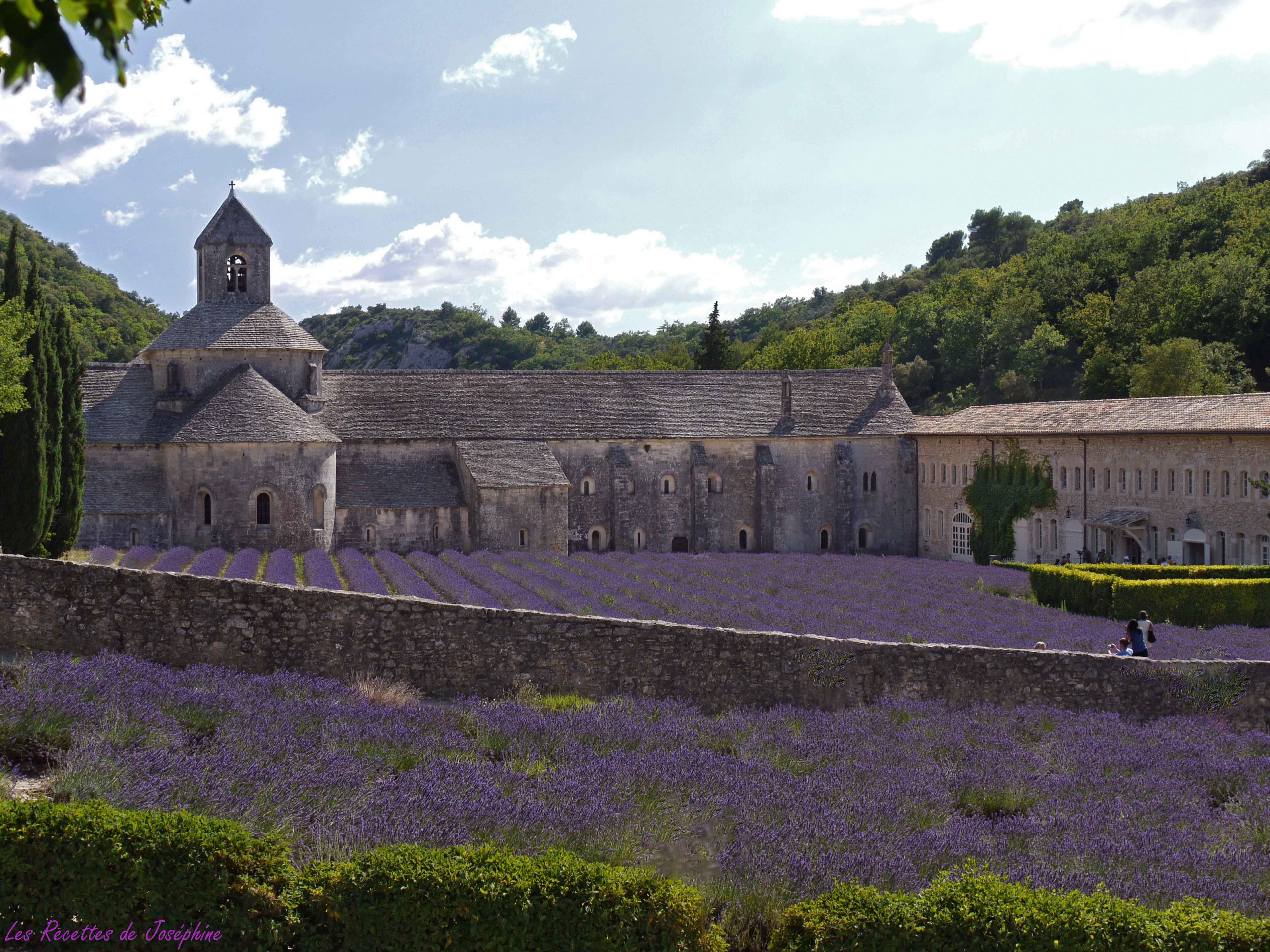 La Route de la Lavande : Abbaye de Sénanque – Sault
